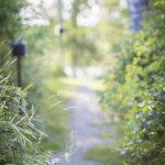 3.9.2020. – Löydä Polkusi -valmennus – Maiju Hietanen